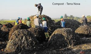 turning waste into compost Terra Nova
